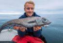 Рыбу-химеру с аномально большими глазами поймали в Северном море