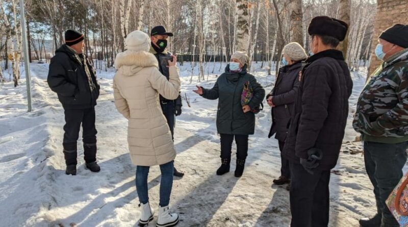 В Талдыкоргане экозащитники подозревают чиновников в тайной распродаже лесов и вырубке деревьев