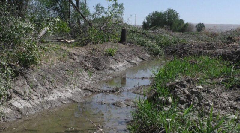 В Алматинской области из-за реконструкции арыков фермеры остались без урожая и зелёных насаждений